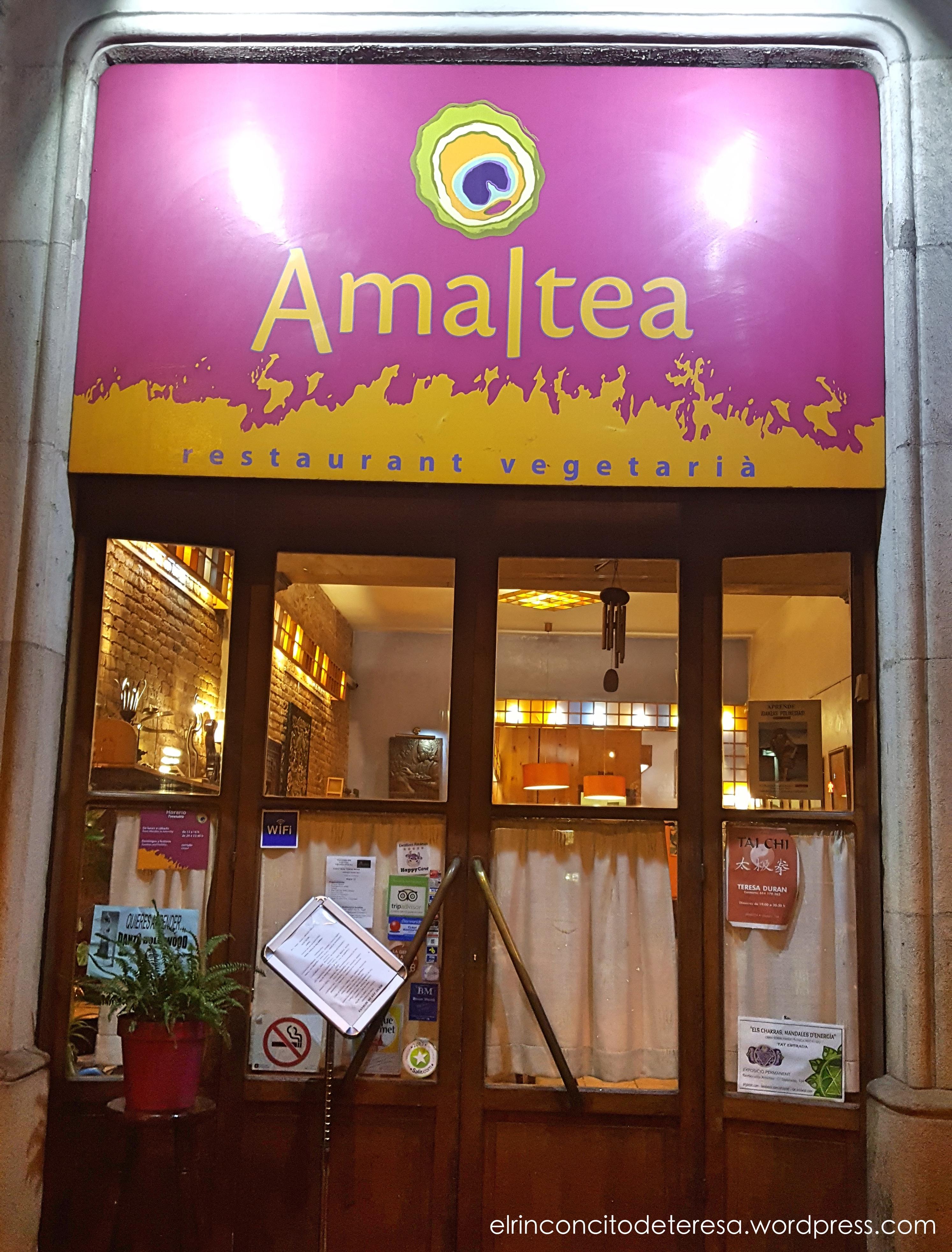 amaltea-vegetariano-entrada